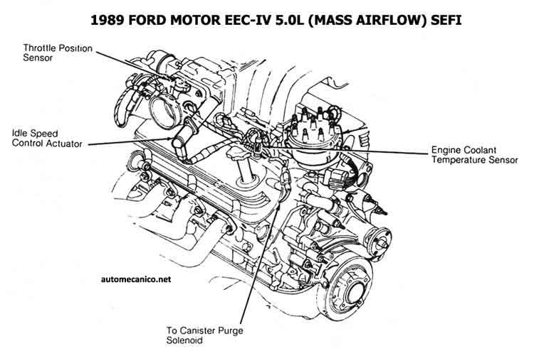 ford 1981  93